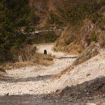 Piste zum Passo Alpin